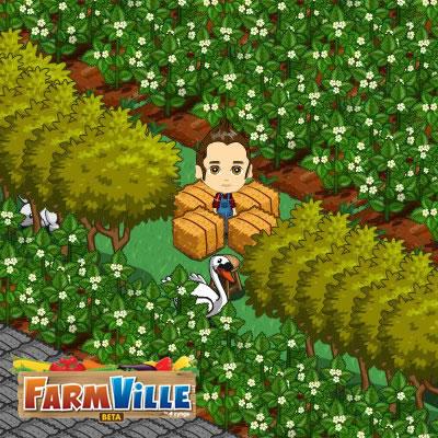 farmville_maennchen_eingebaut